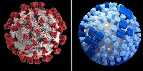 آیا آنفلوانزا با قدرت بیشتری باز می گردد؟